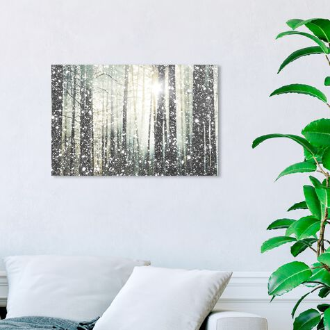 Magical Forest SILVER