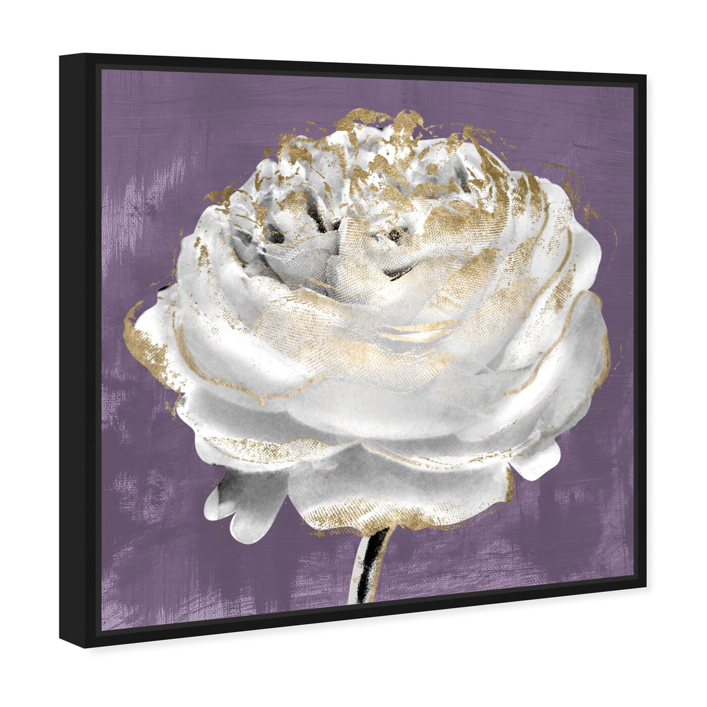 Angled view of Lilac Ranunculus featuring floral and botanical and florals art.