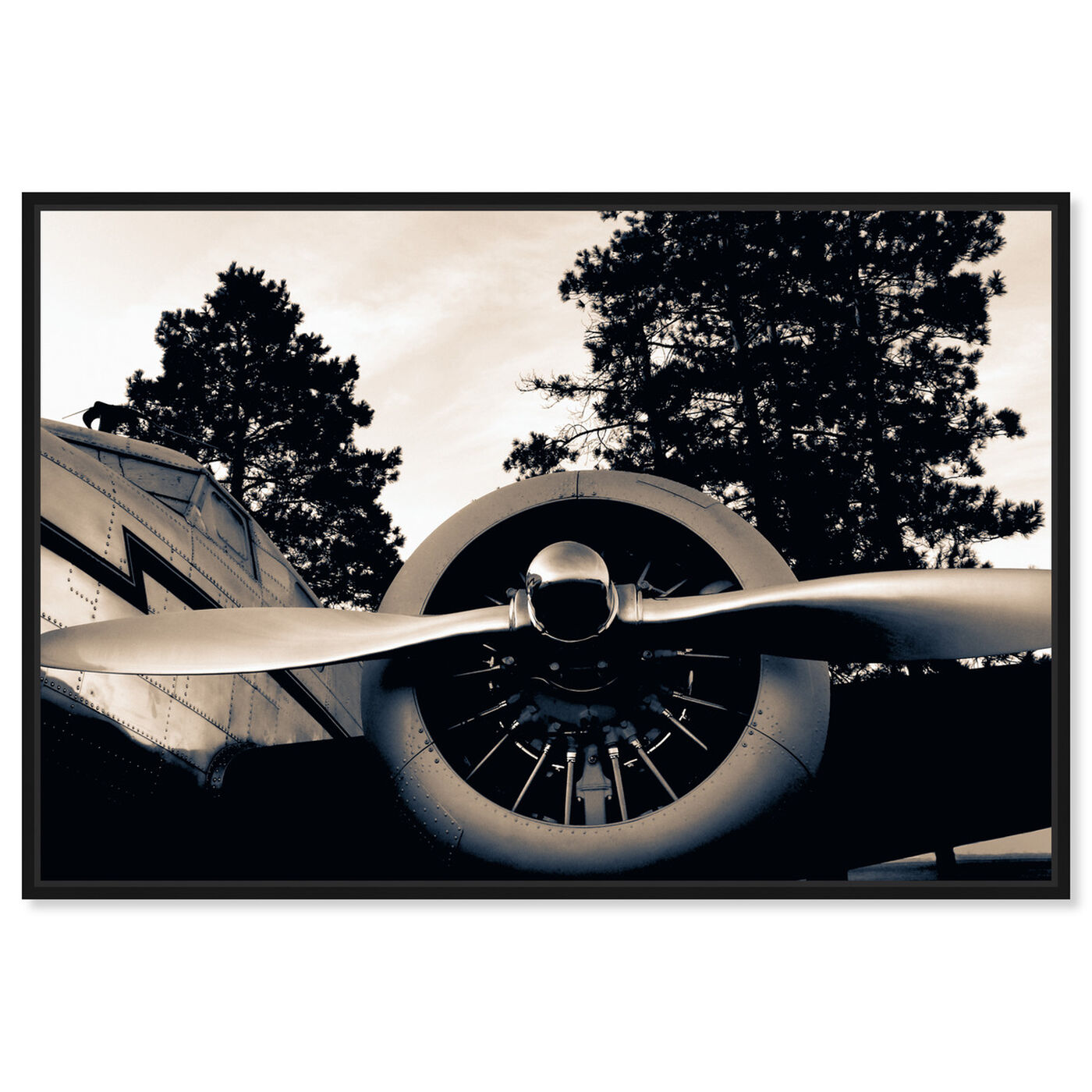 Front view of Take Off featuring transportation and airplanes art.