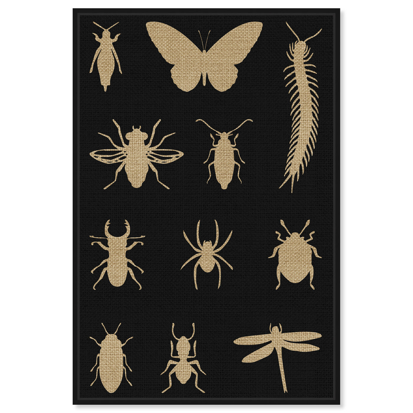 Front view of Black Creepy Crawlies featuring animals and insects art.