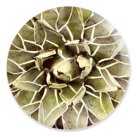 Cactus Flower Round