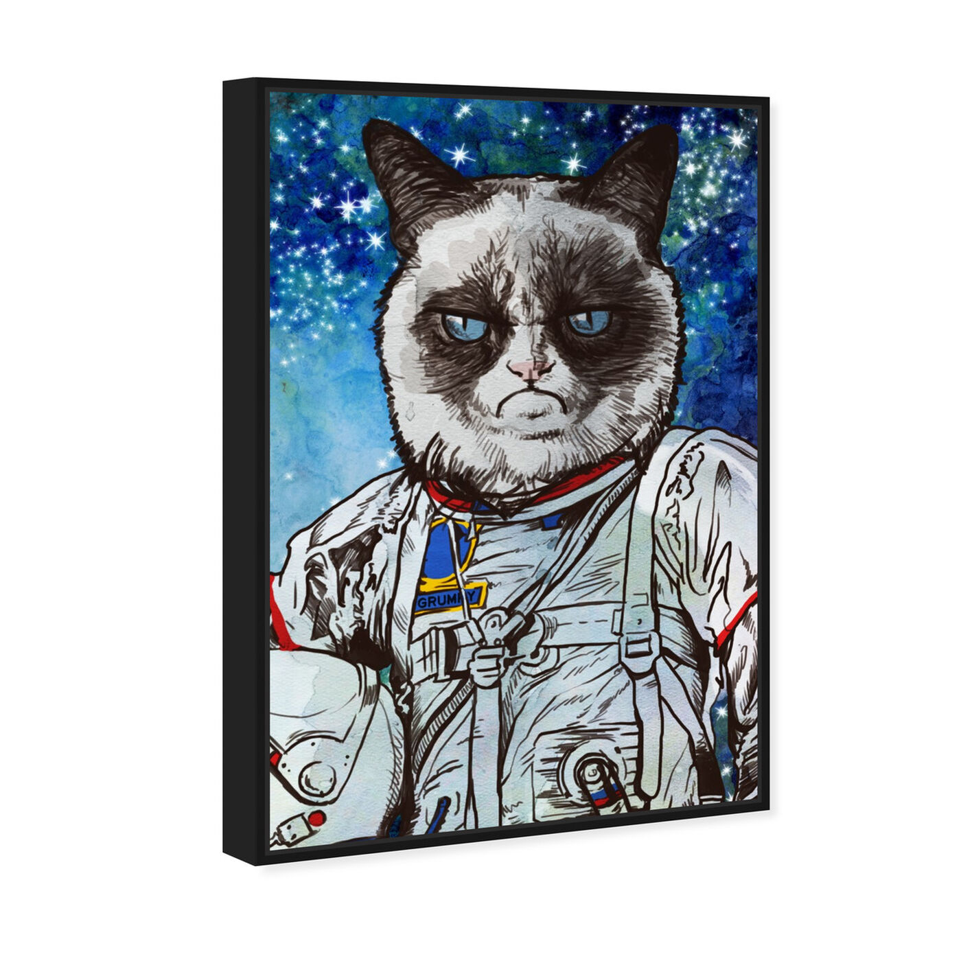 Angled view of Captain Grumpy featuring animals and cats and kitties art.