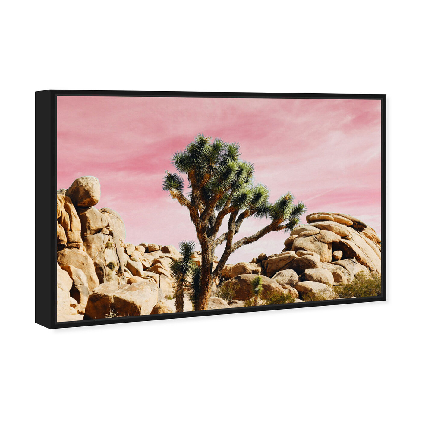 Angled view of Joshua Tree Pink featuring nature and landscape and desert landscapes art.