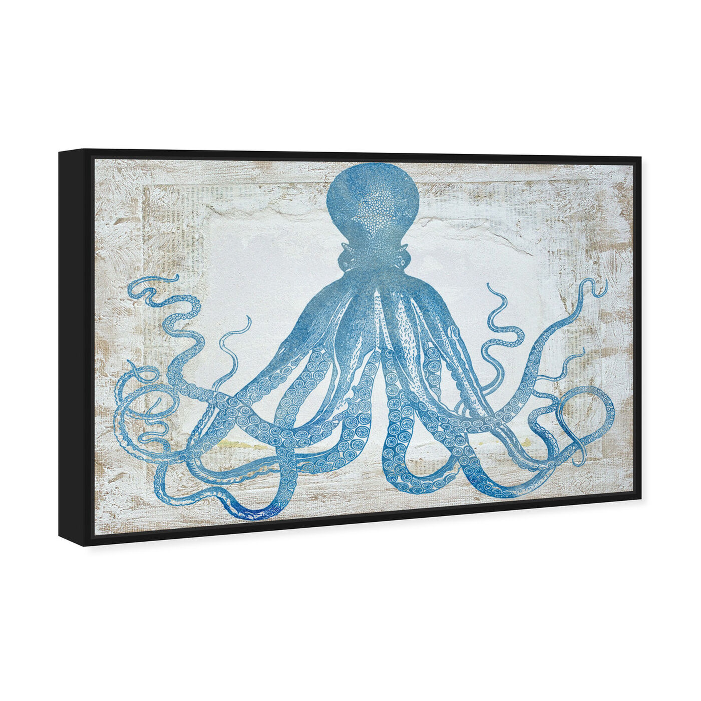Angled view of Squid Blue featuring nautical and coastal and marine life art.