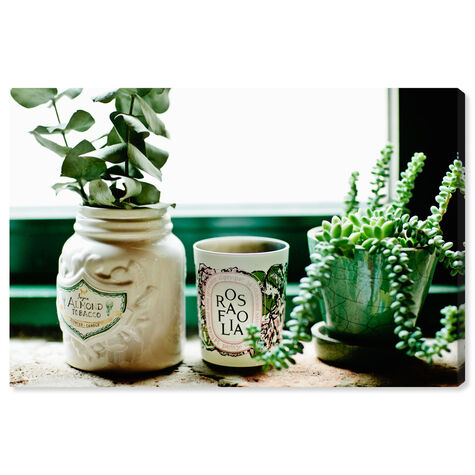 Romantic Plants by Cassandra Eldridge