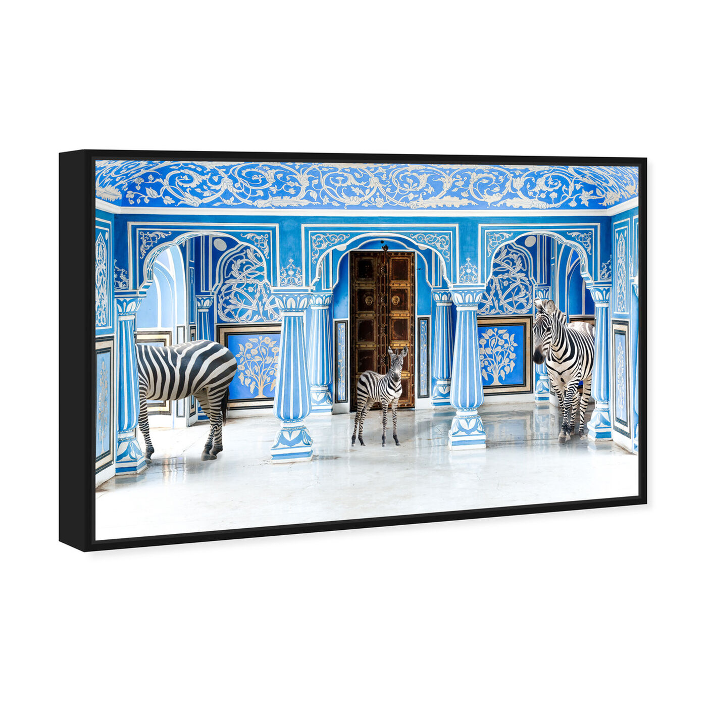 Angled view of Zebra Blues featuring animals and zoo and wild animals art.