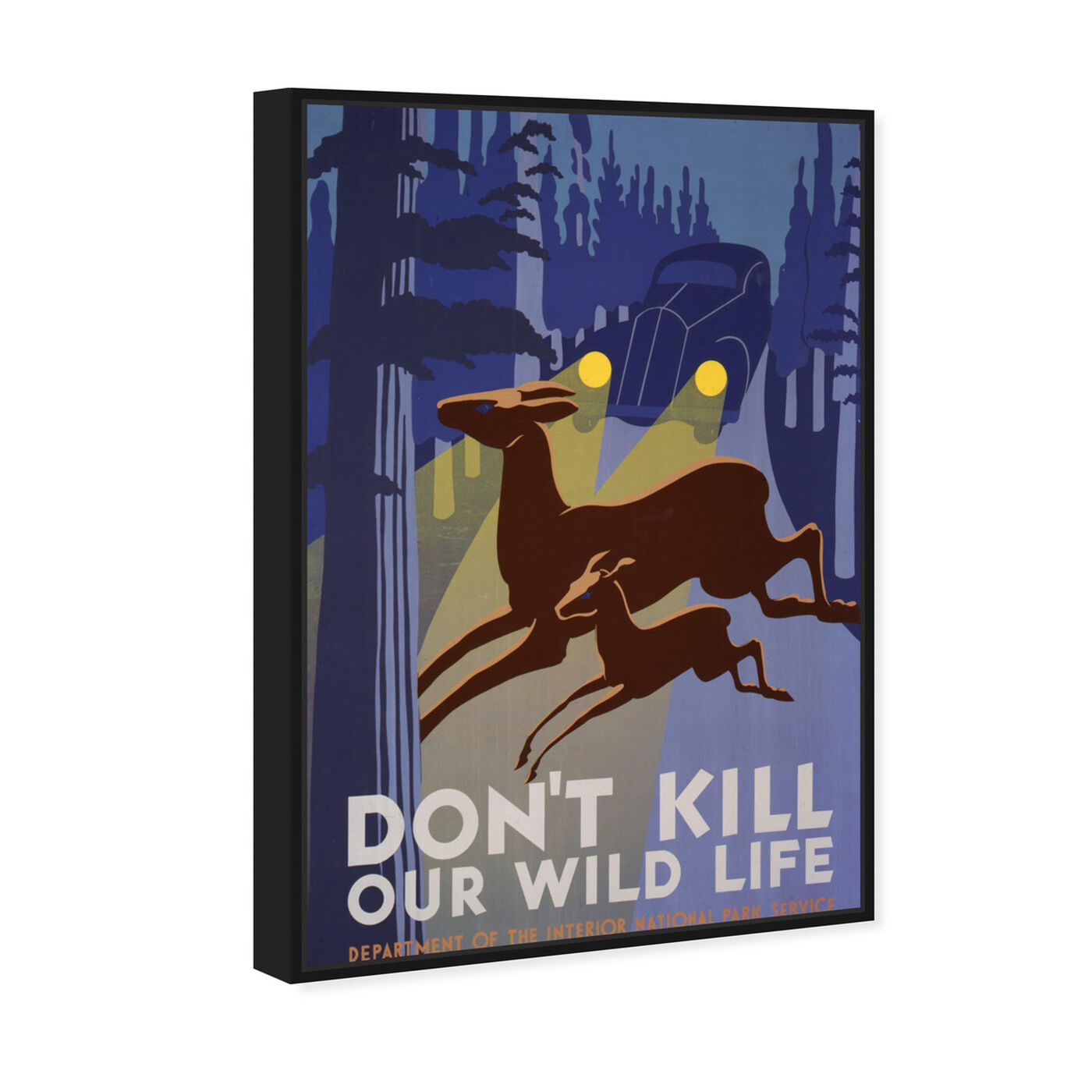 Angled view of Don't Kill Our Wild Life featuring advertising and posters art.