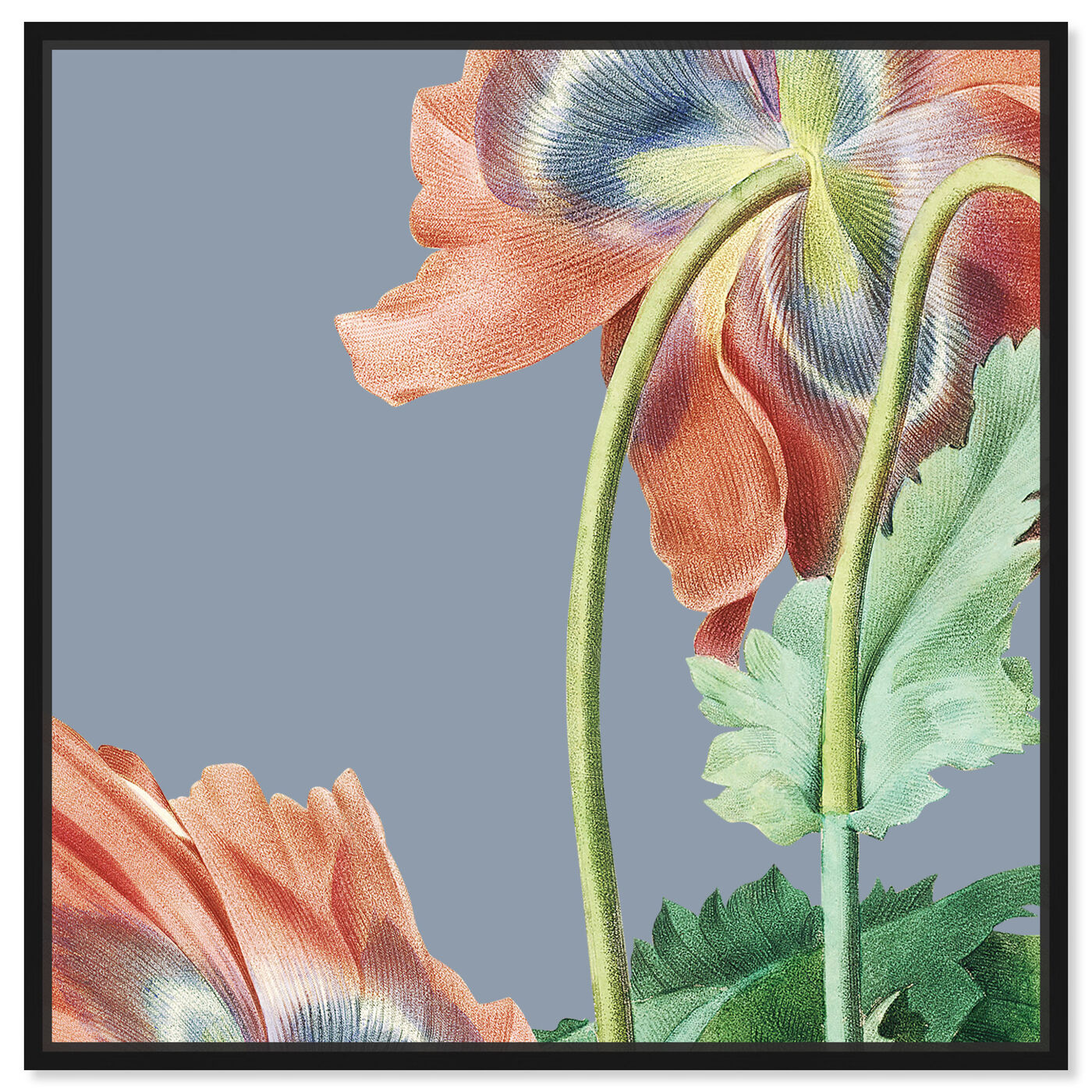 Front view of Flower I featuring floral and botanical and florals art.