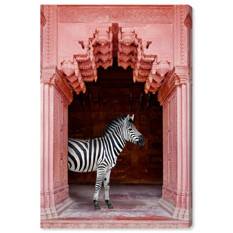Zebras Apartment is Coral Pink