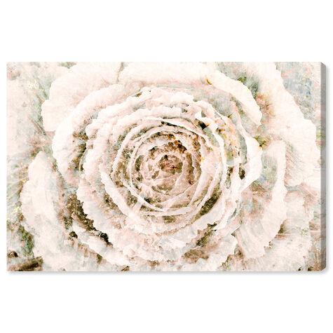 Brown Winter Flower