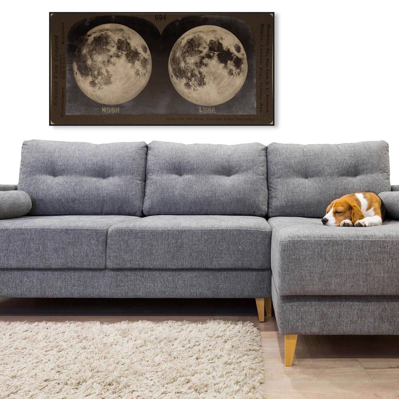Hanging view of Full Moon featuring astronomy and space and moons art.