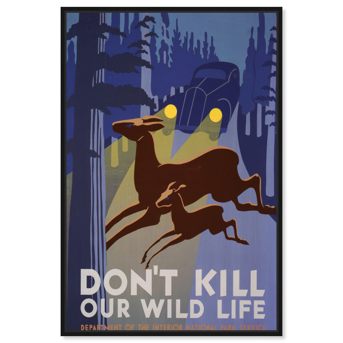 Front view of Don't Kill Our Wild Life featuring advertising and posters art.
