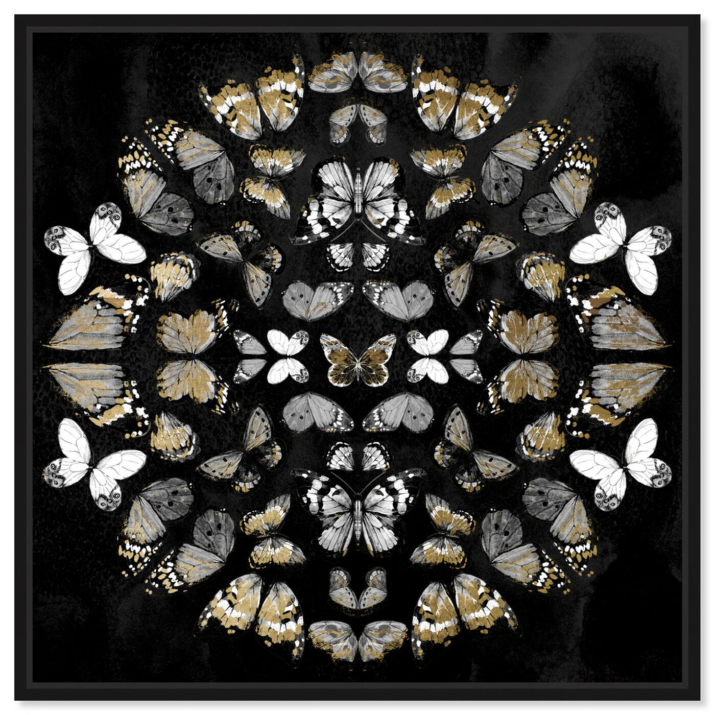 Front view of Butterfly K Night featuring animals and insects art.