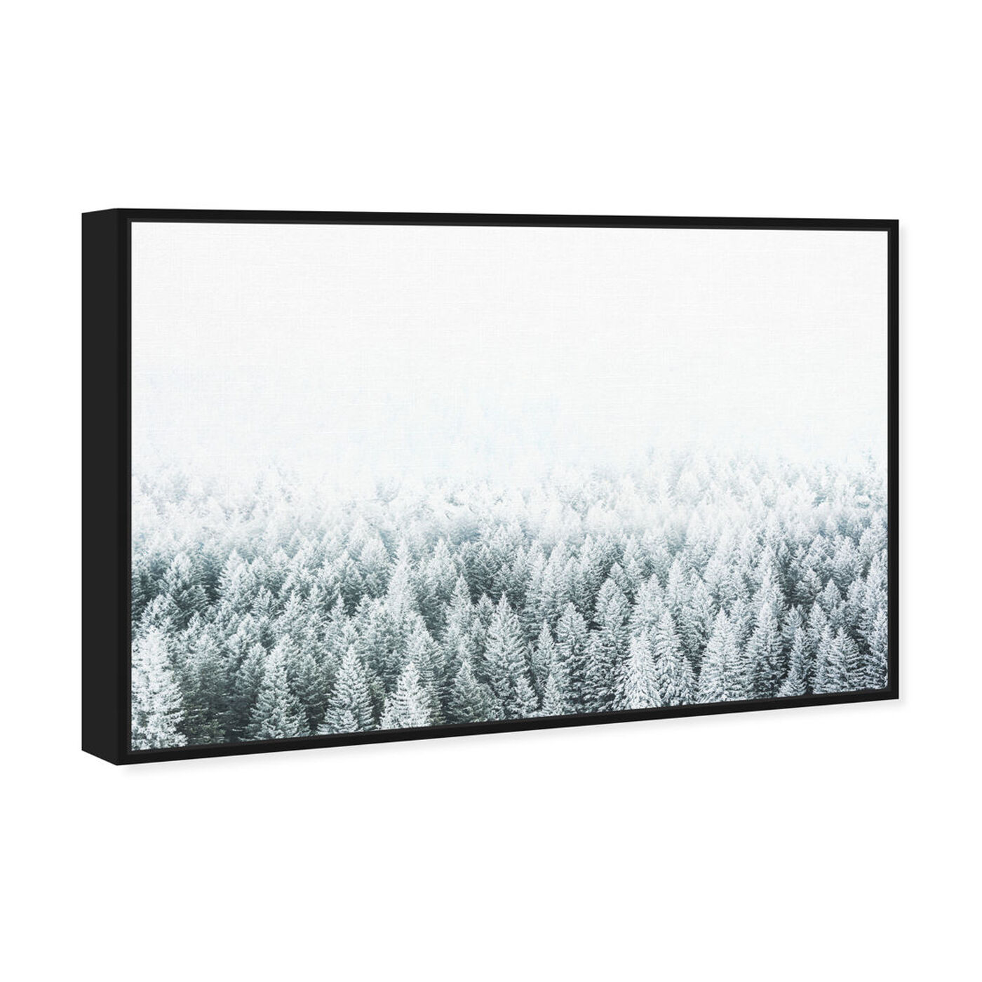 Angled view of Pine Forest featuring nature and landscape and forest landscapes art.