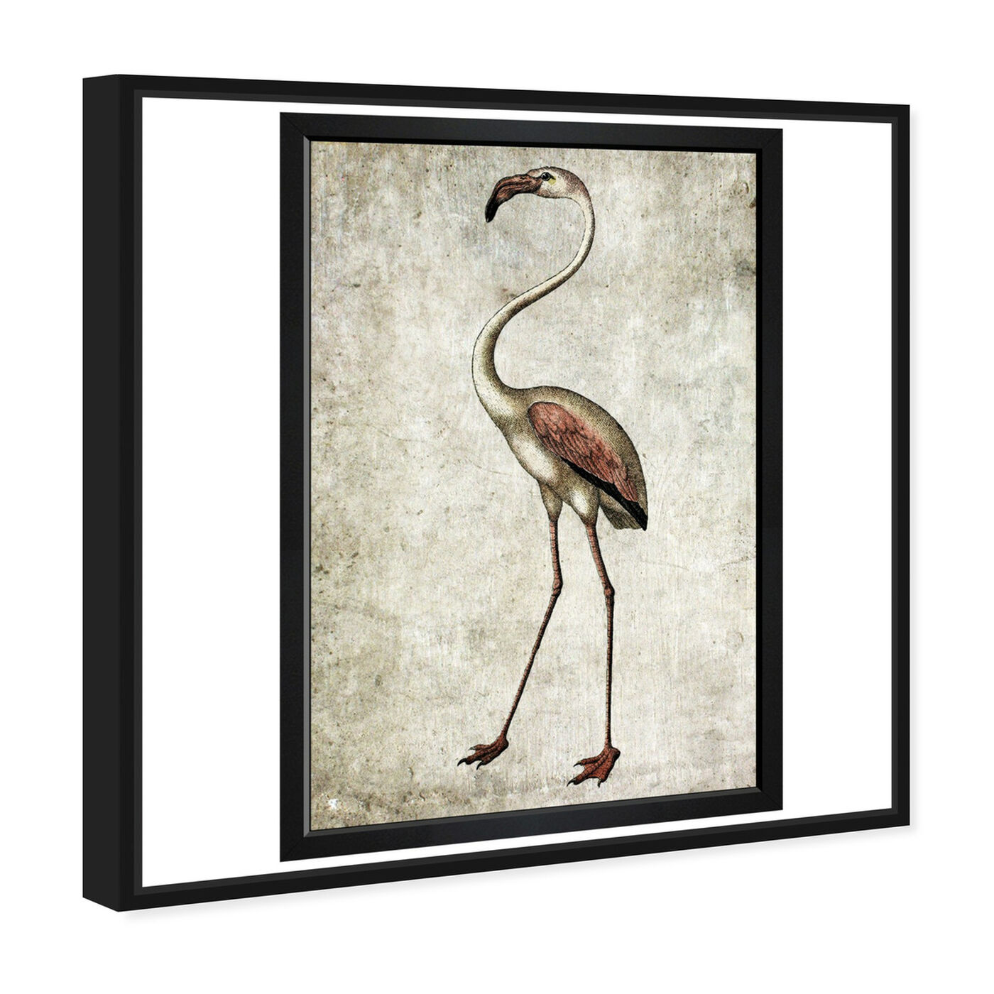 Angled view of Vintage Flamingo featuring animals and birds art.