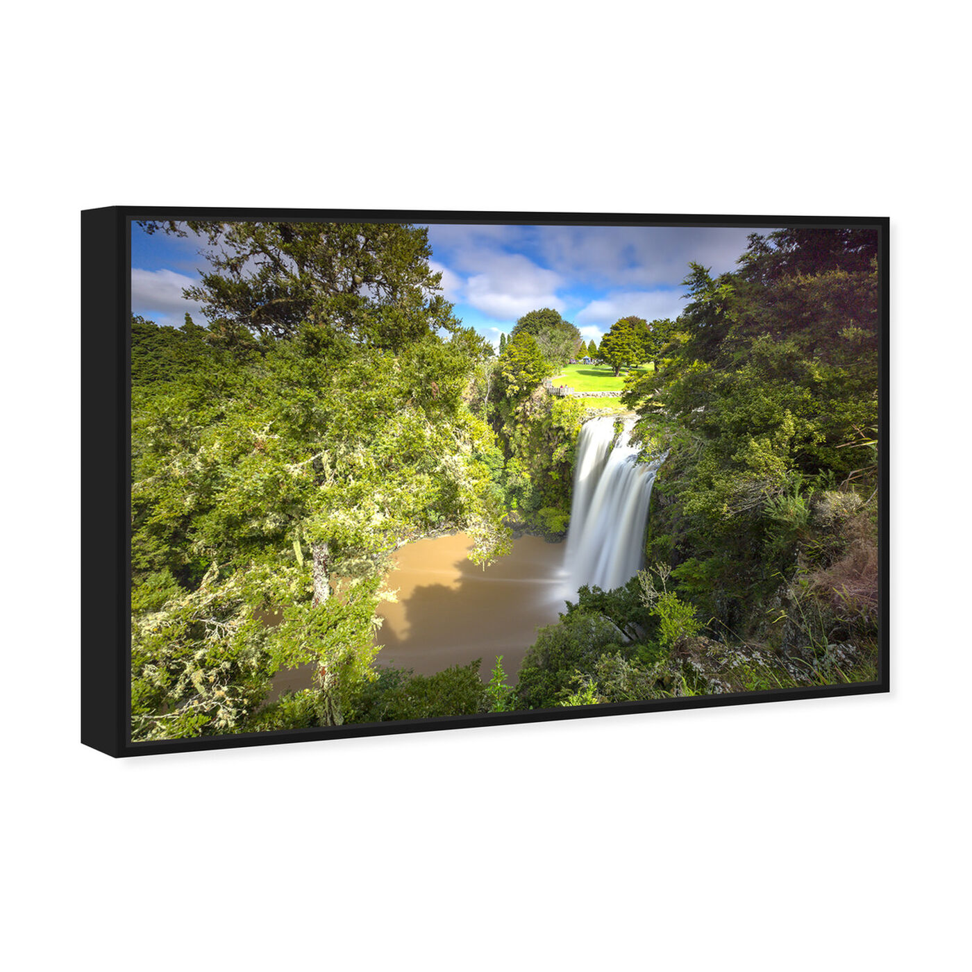 Angled view of Curro Cardenal - Rainforest II featuring nature and landscape and nature art.
