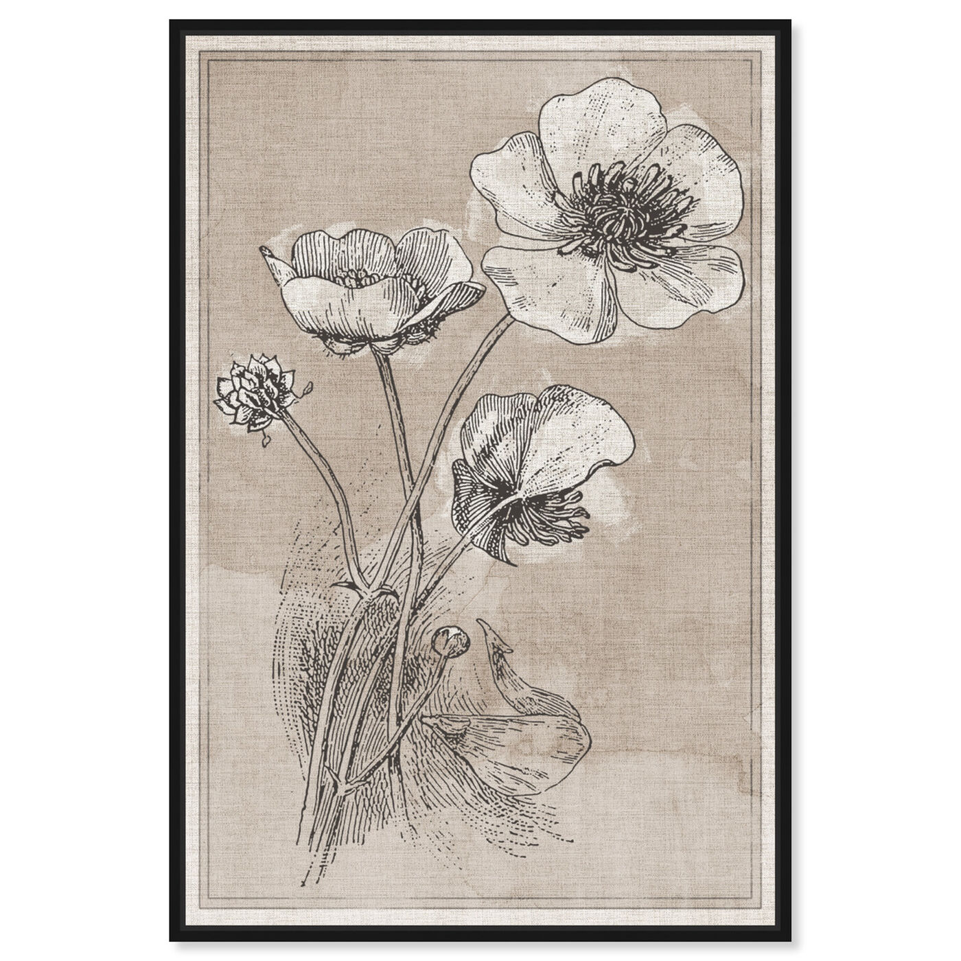 Front view of Poppies on Linen featuring floral and botanical and florals art.