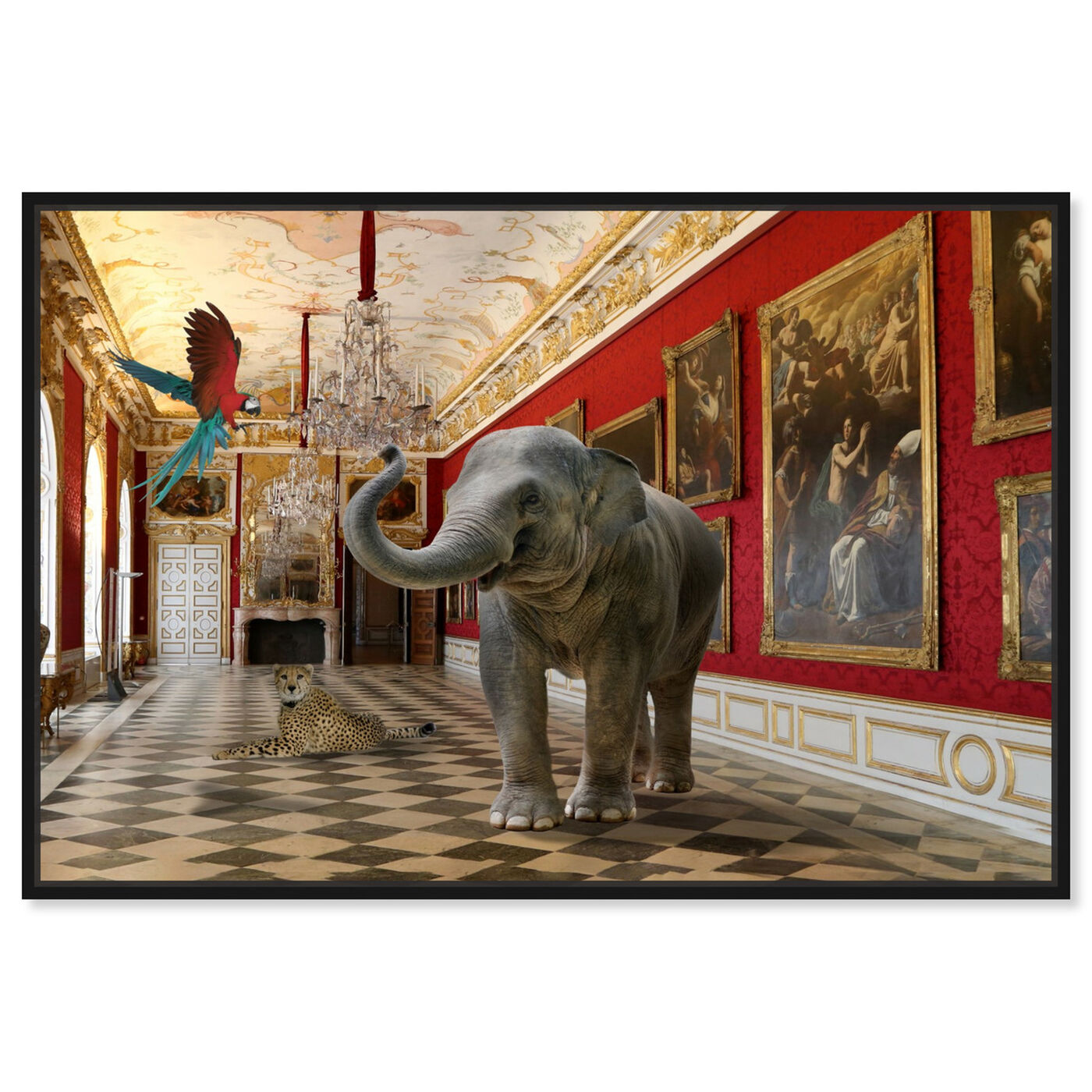 Front view of Delicate as an Elephant can Be featuring animals and zoo and wild animals art.