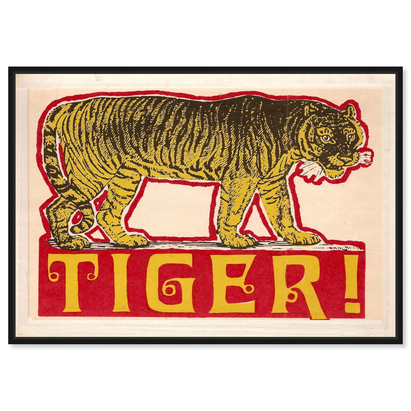 Front view of Indian Tiger featuring advertising and posters art.