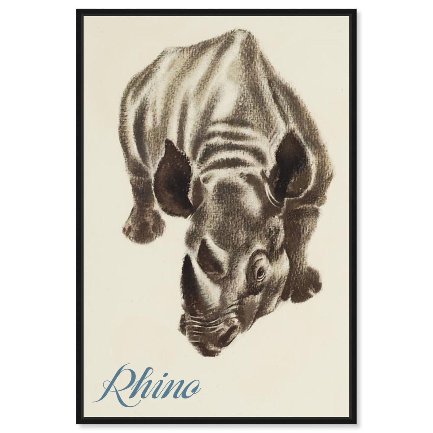 Front view of Rhino featuring animals and zoo and wild animals art.