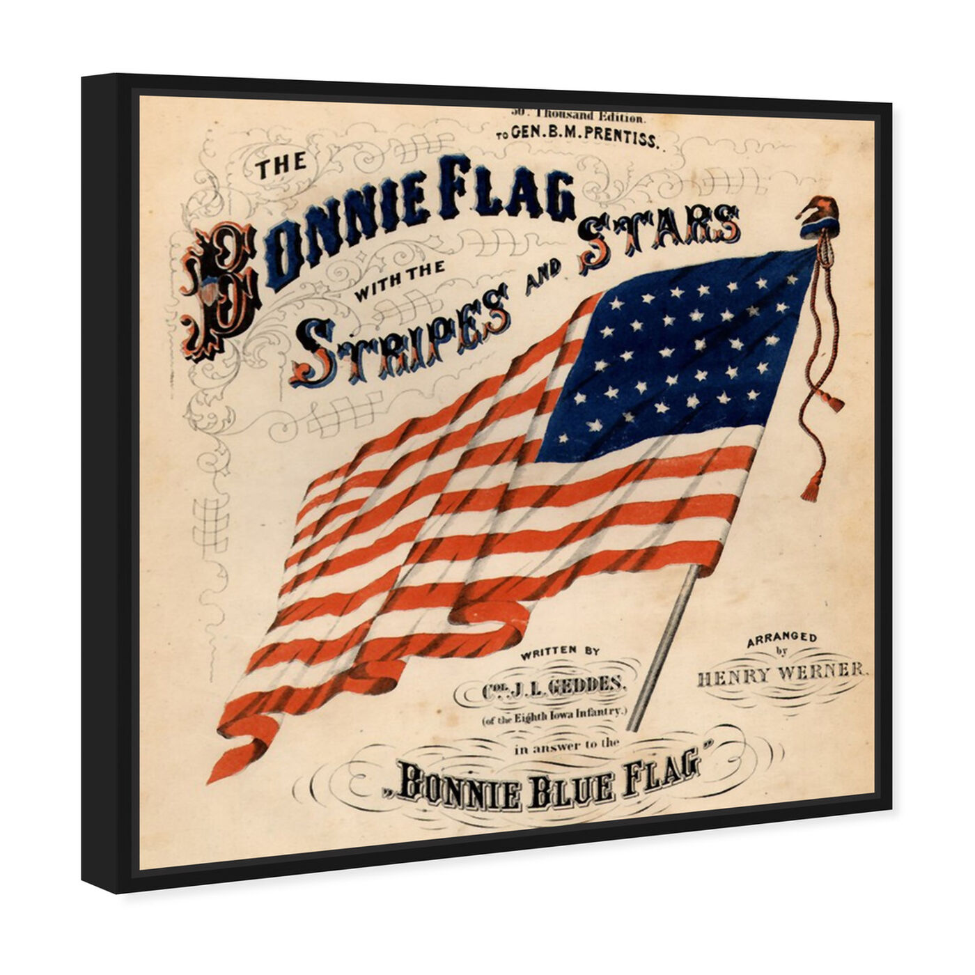 Angled view of Bonnie Flag featuring americana and patriotic and us flags art.