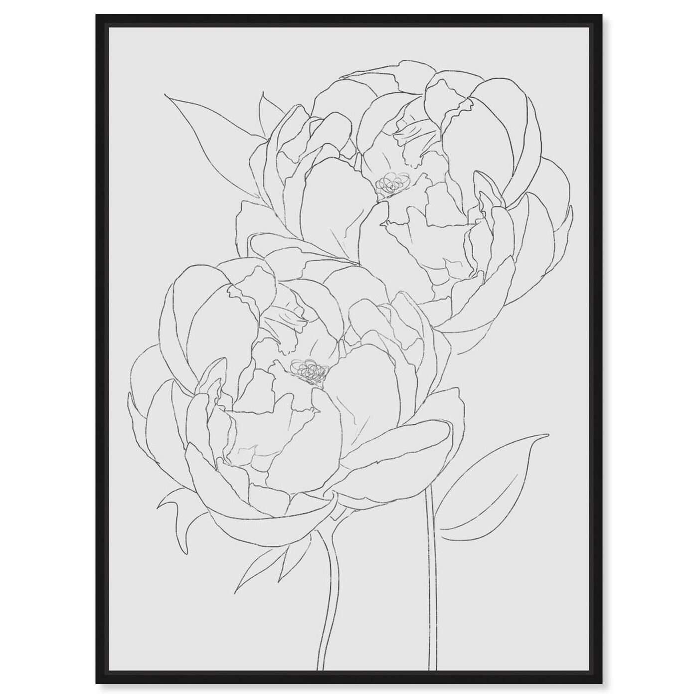 Front view of Peonies featuring floral and botanical and florals art.