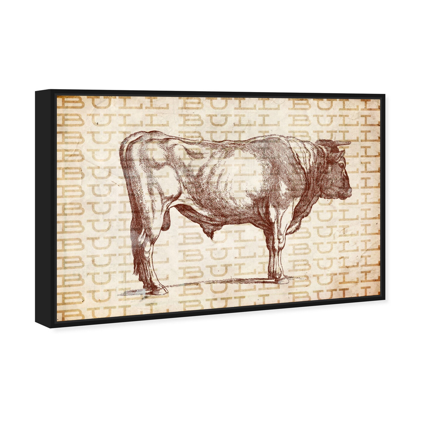 Angled view of Bull featuring animals and farm animals art.