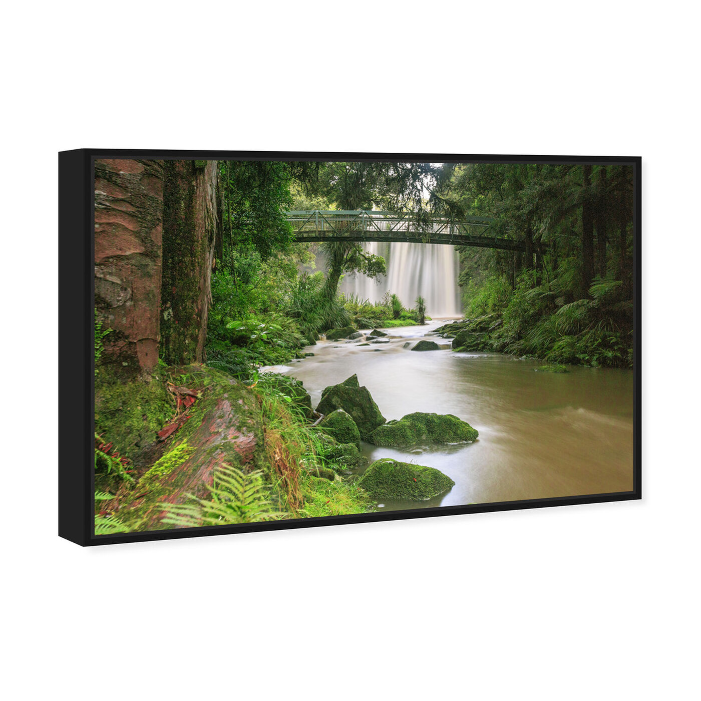 Angled view of Curro Cardenal - Rainforest III featuring nature and landscape and nature art.