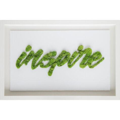 Inspire II