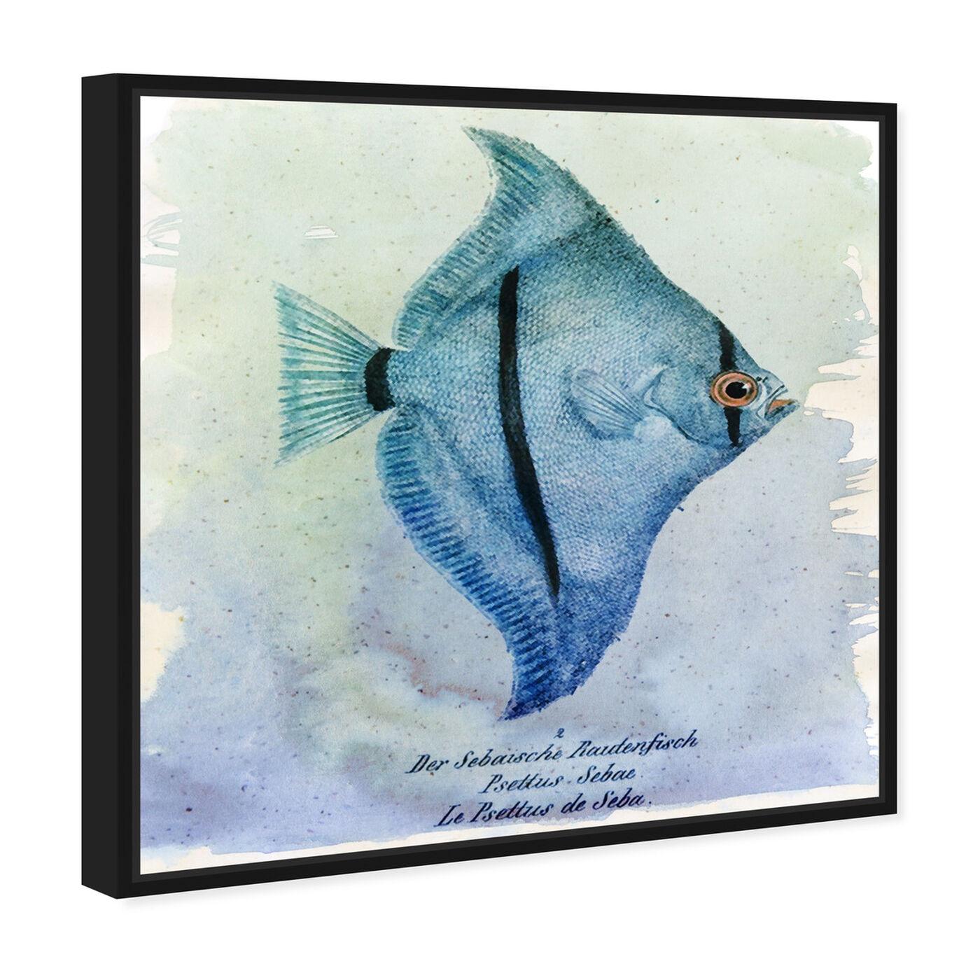 Angled view of Seba Fish featuring nautical and coastal and marine life art.