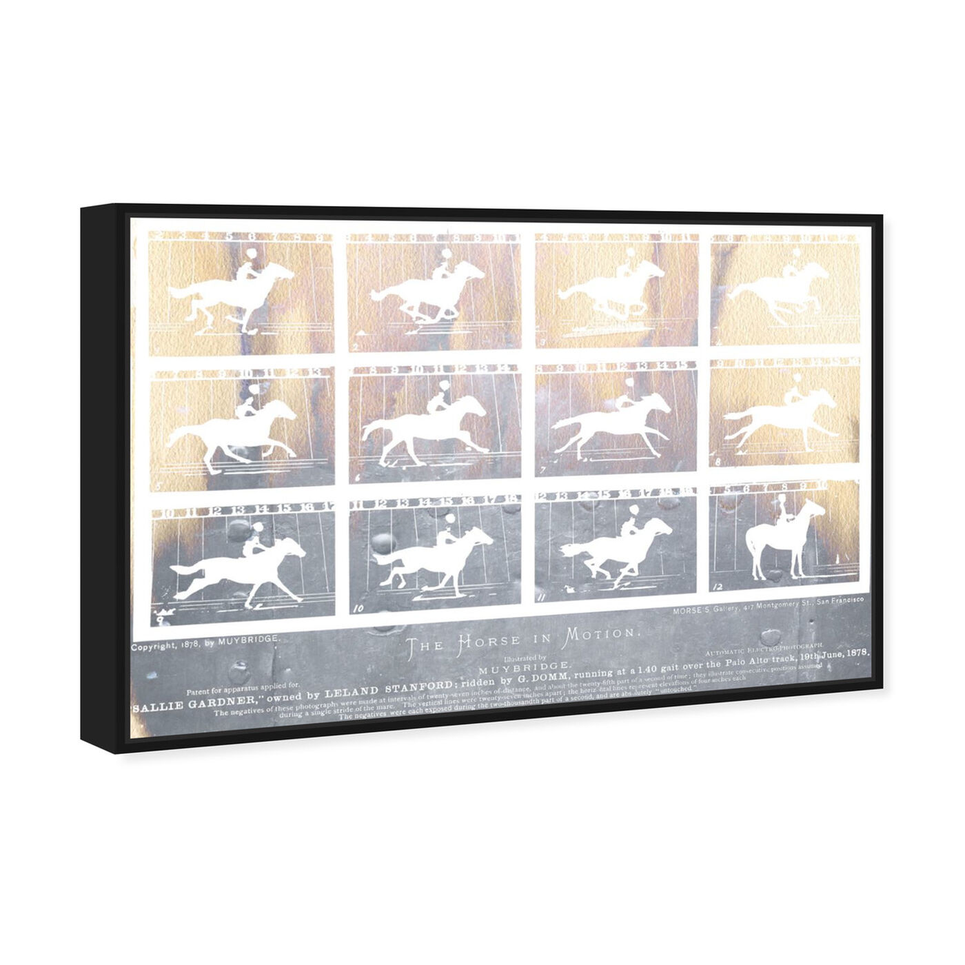 Angled view of The Horse in Motion featuring animals and farm animals art.