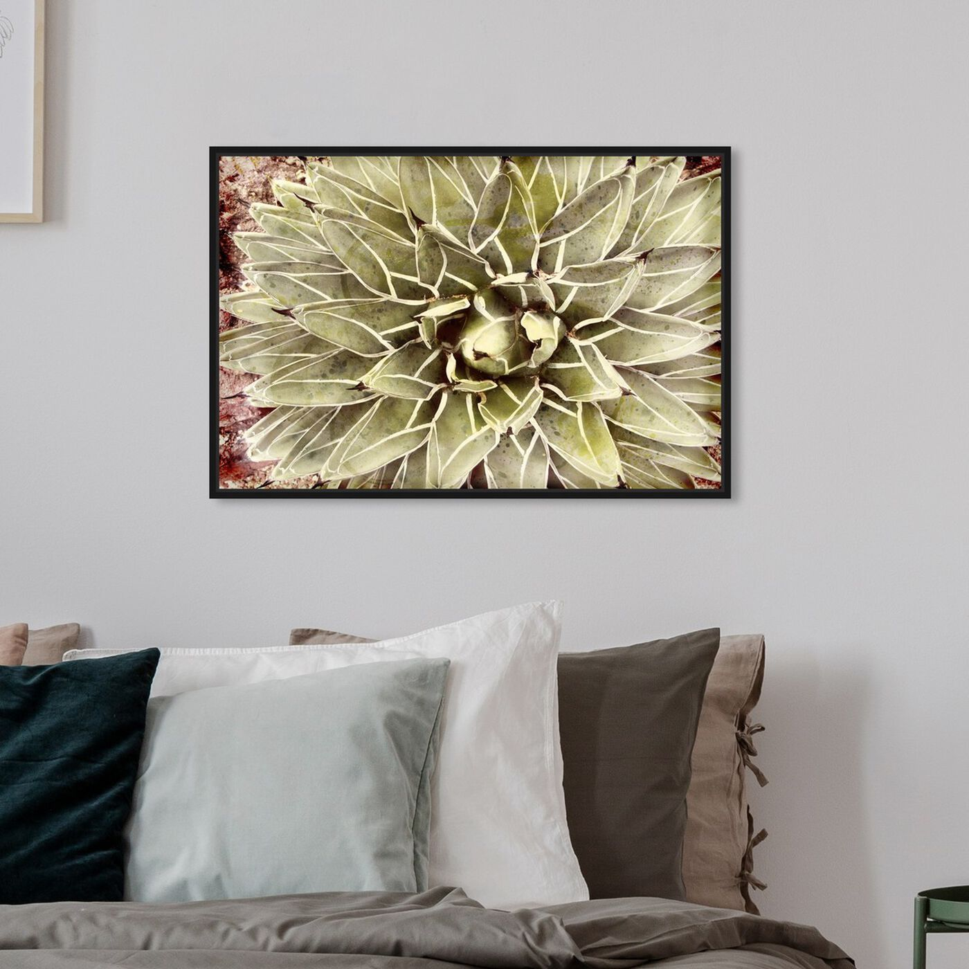 Hanging view of Cactus Flower featuring floral and botanical and botanicals art.