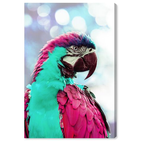 Pink Turquoise Macaw