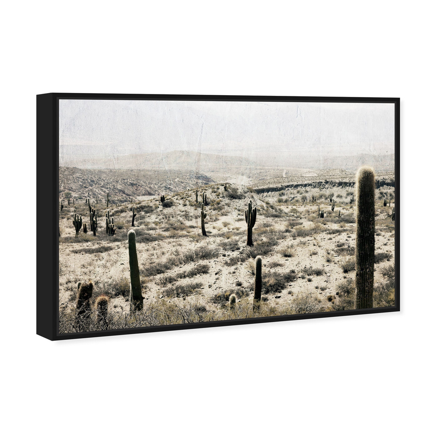 Angled view of Down South featuring nature and landscape and desert landscapes art.