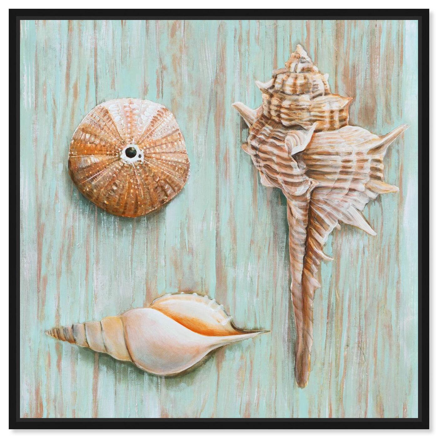 Front view of SAI - Maritimas Treasures II featuring nautical and coastal and marine life art.