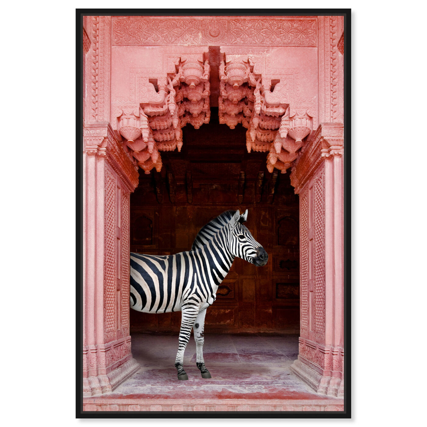 Front view of Zebras Apartment is Coral Pink featuring animals and zoo and wild animals art.