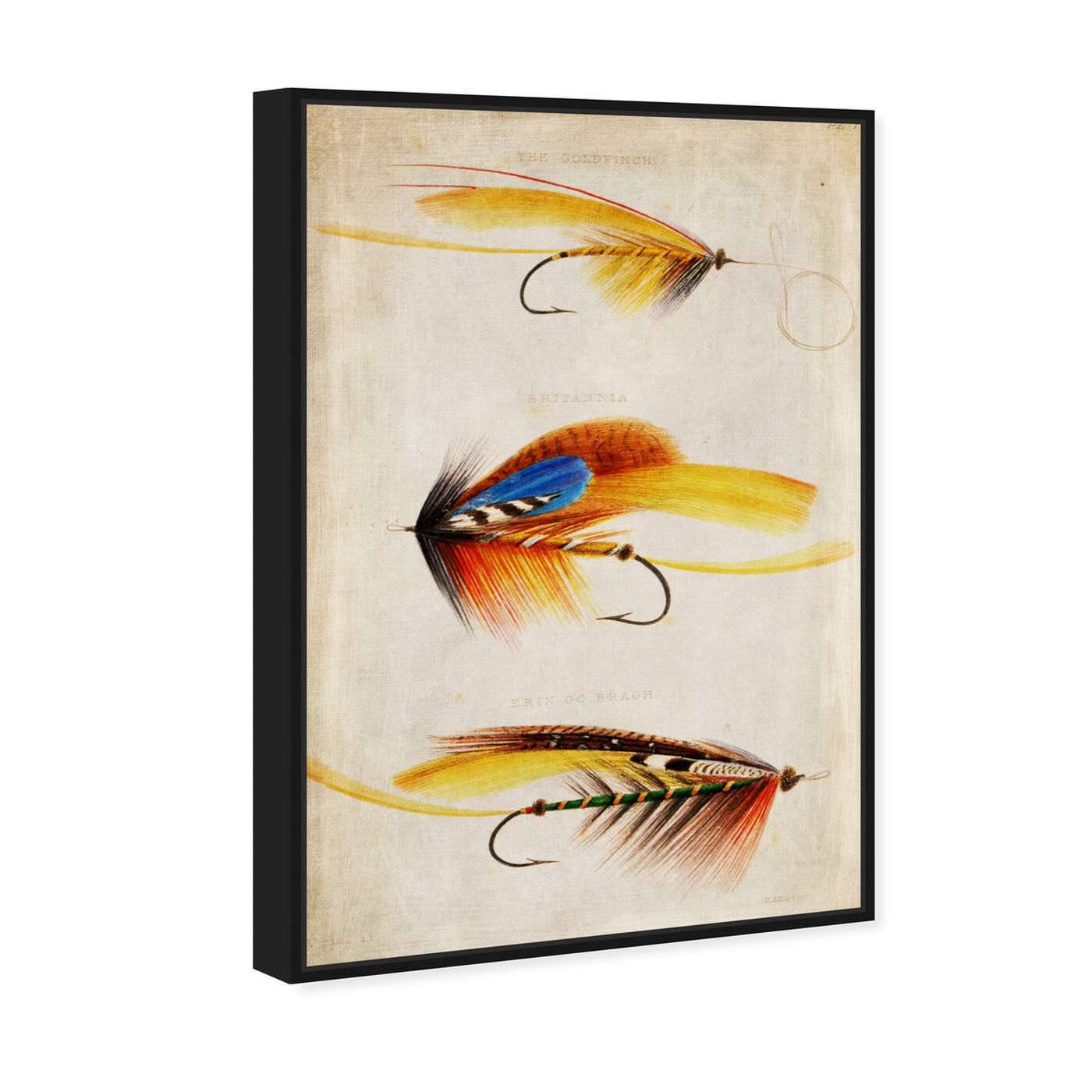 Angled view of Goldfinch featuring entertainment and hobbies and fishing art.
