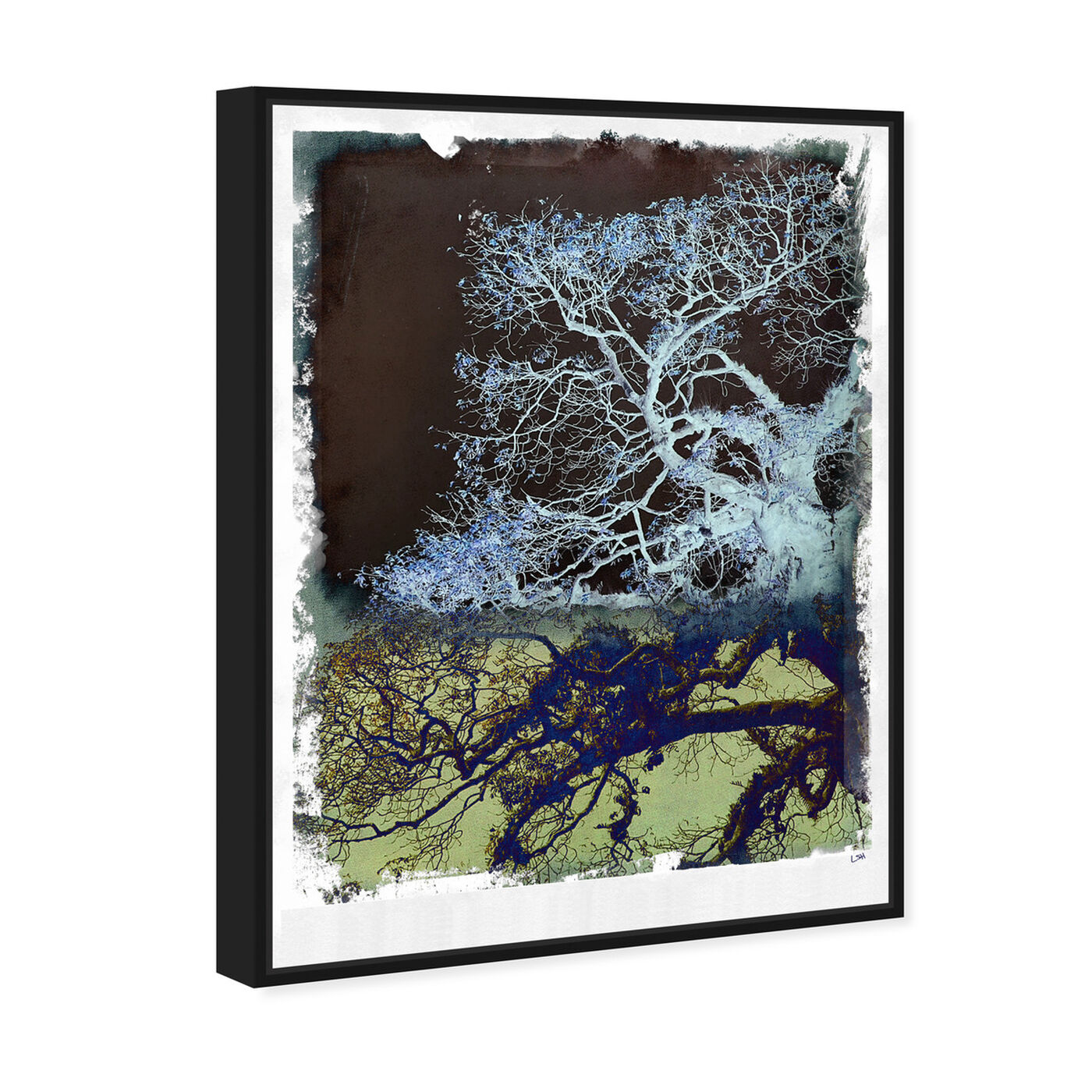 Angled view of Wanderer featuring floral and botanical and trees art.