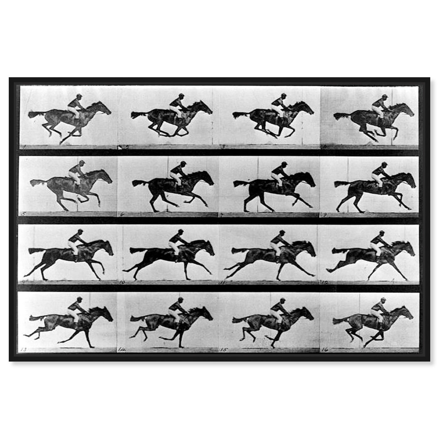 Front view of Horse In Motion II featuring animals and farm animals art.