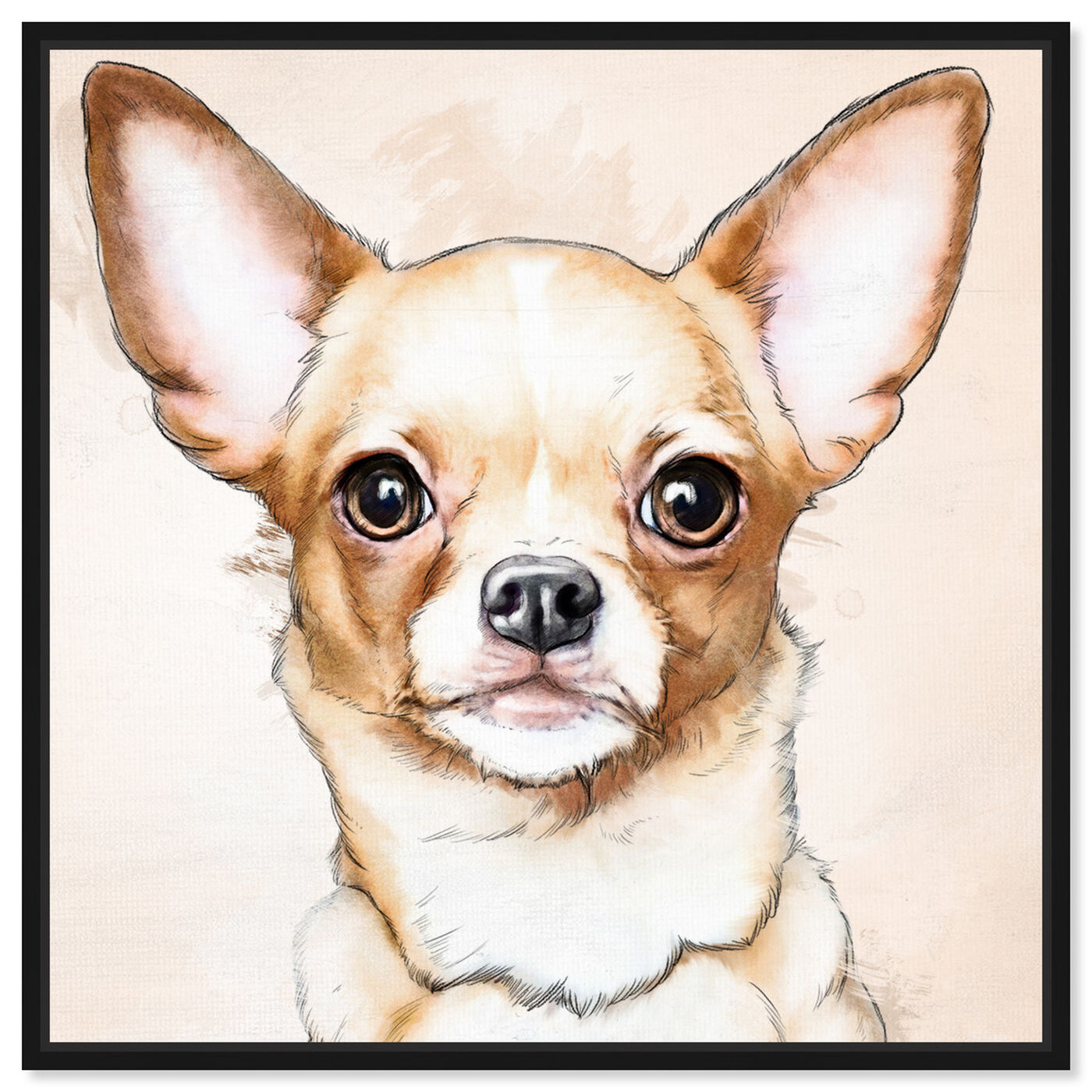 Front view of Chihuahua Watercolor featuring animals and dogs and puppies art.