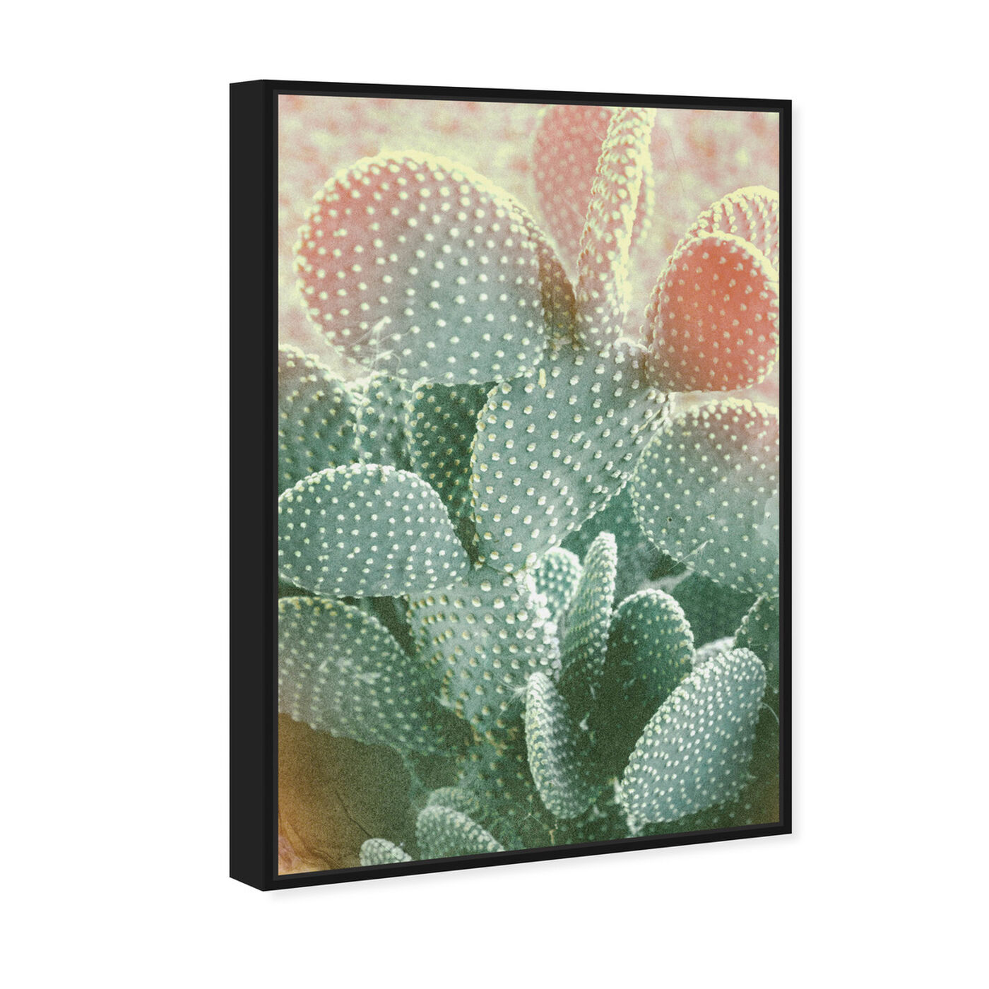 Angled view of Blushing Cactus featuring floral and botanical and botanicals art.
