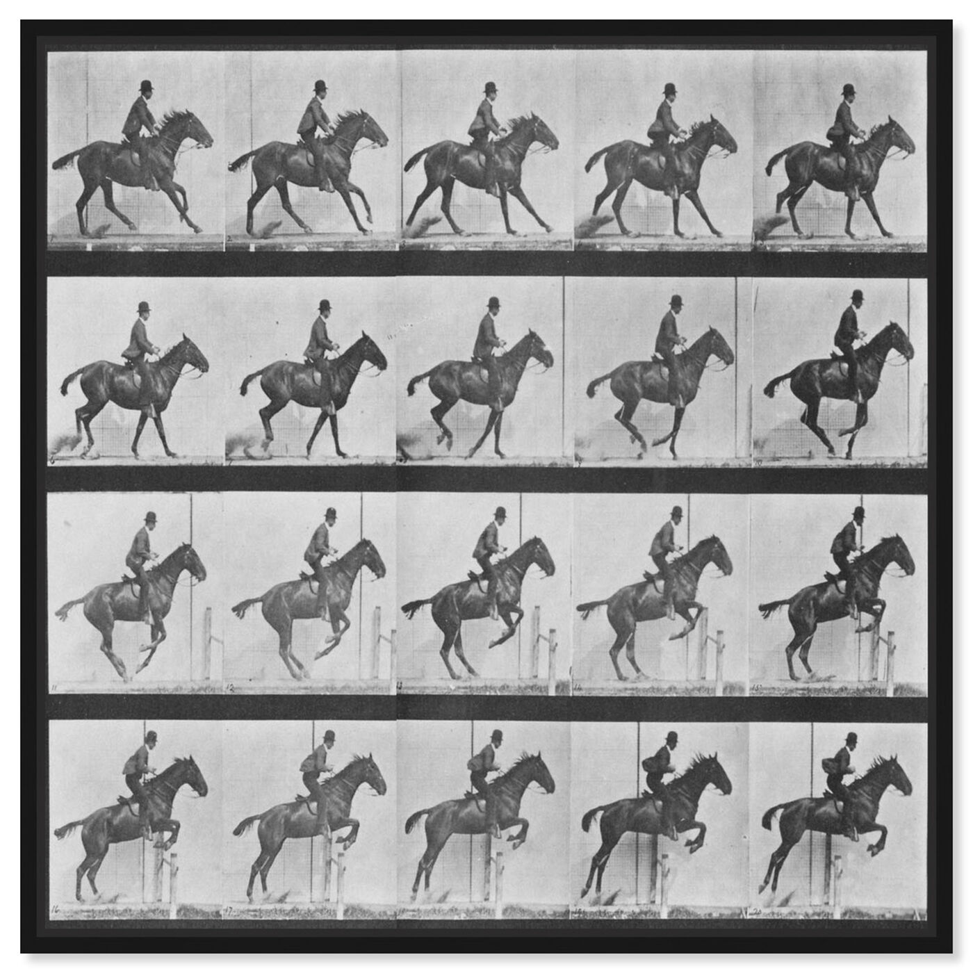 Front view of Stages of a Jumping Horse featuring animals and farm animals art.