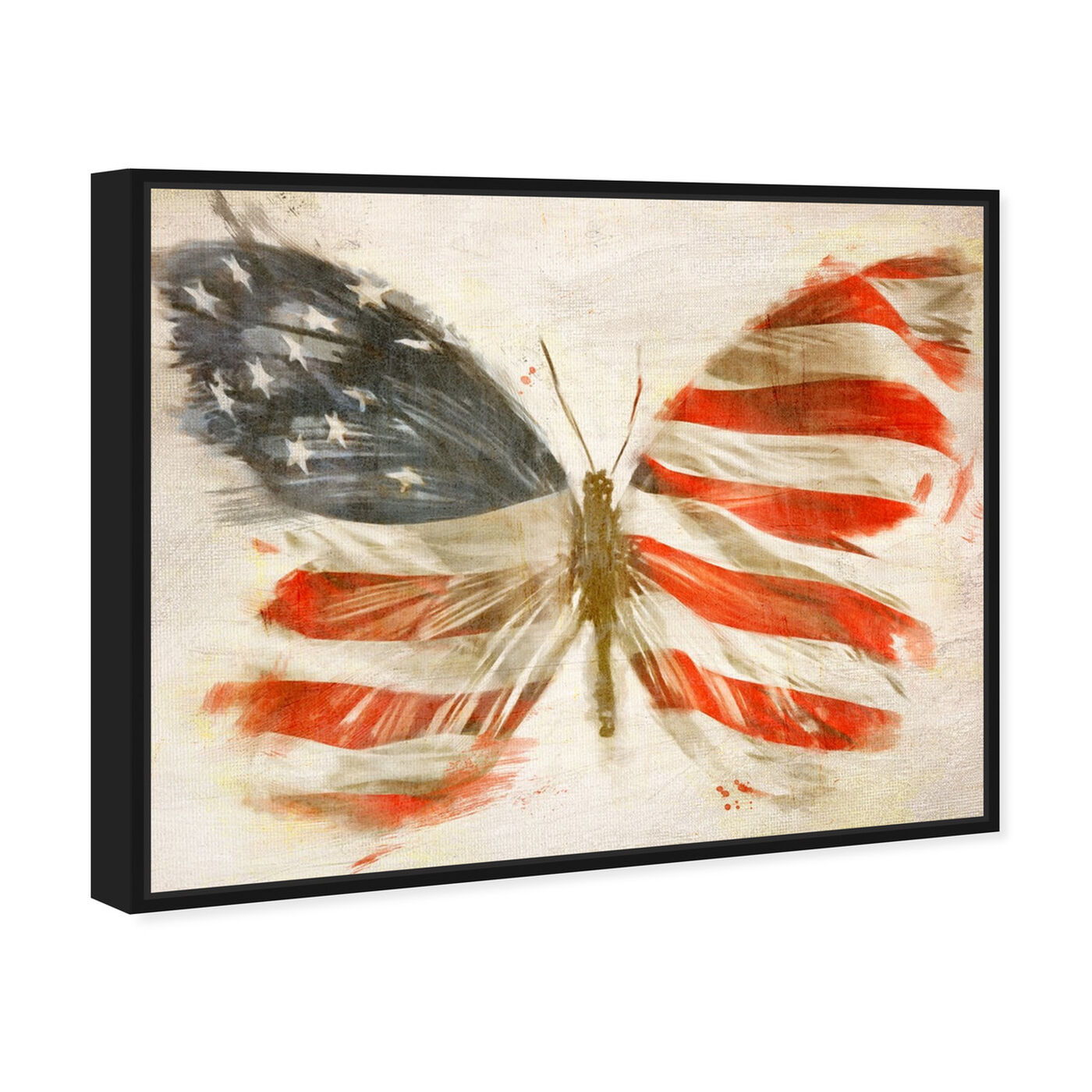 Angled view of American Butterfly featuring maps and flags and american countries flags art.