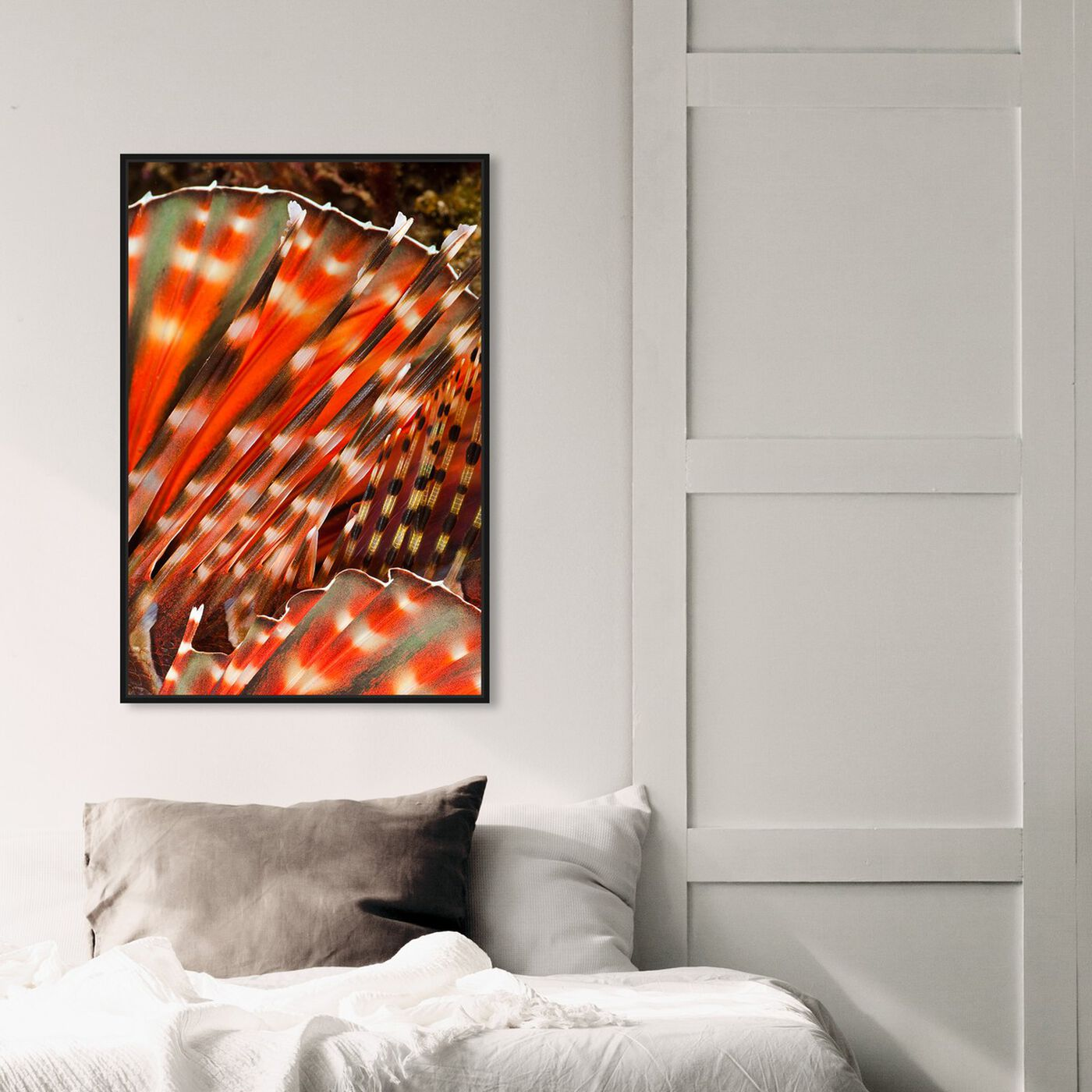 Hanging view of Zebra Lionfish by David Fleetham featuring nautical and coastal and marine life art.