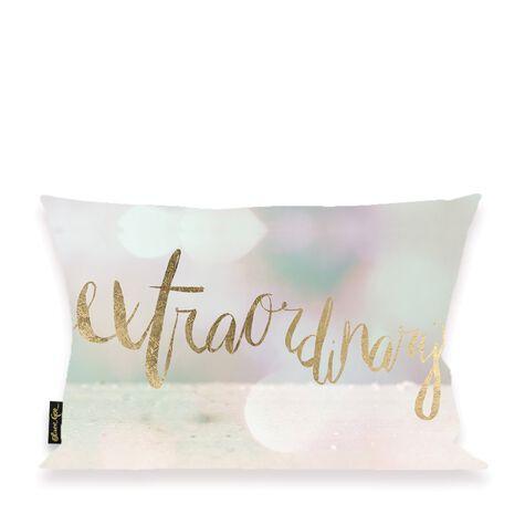 Extraordinary Blanc Pillow
