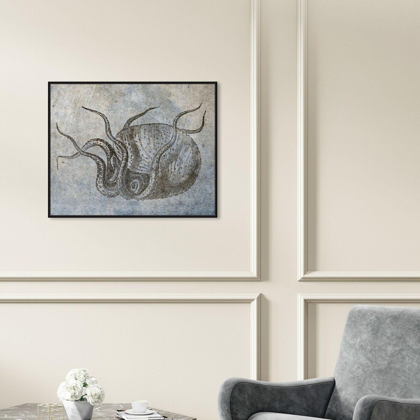 Hanging view of Nautilus featuring nautical and coastal and marine life art.