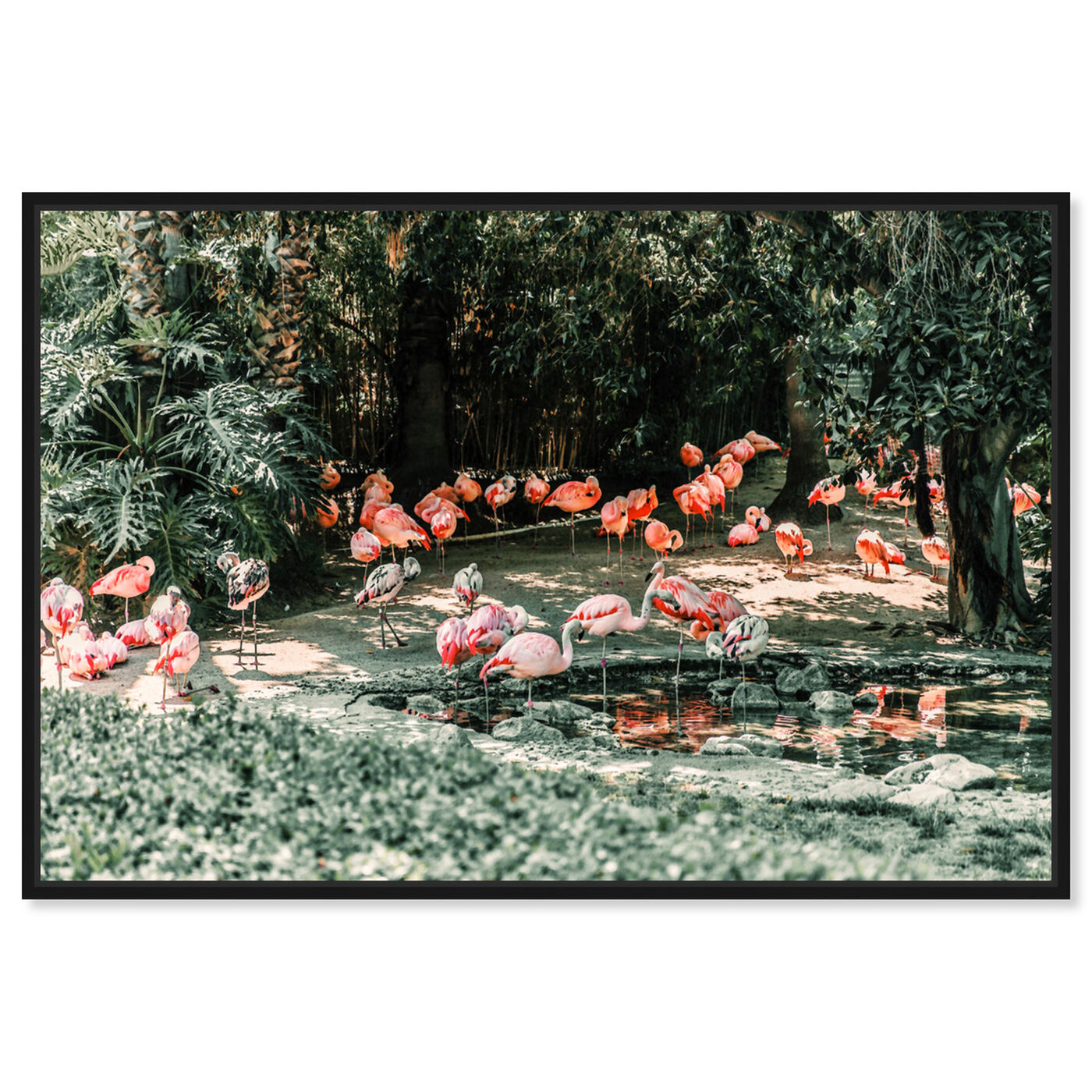 Front view of Flamingo Gathering featuring animals and birds art.