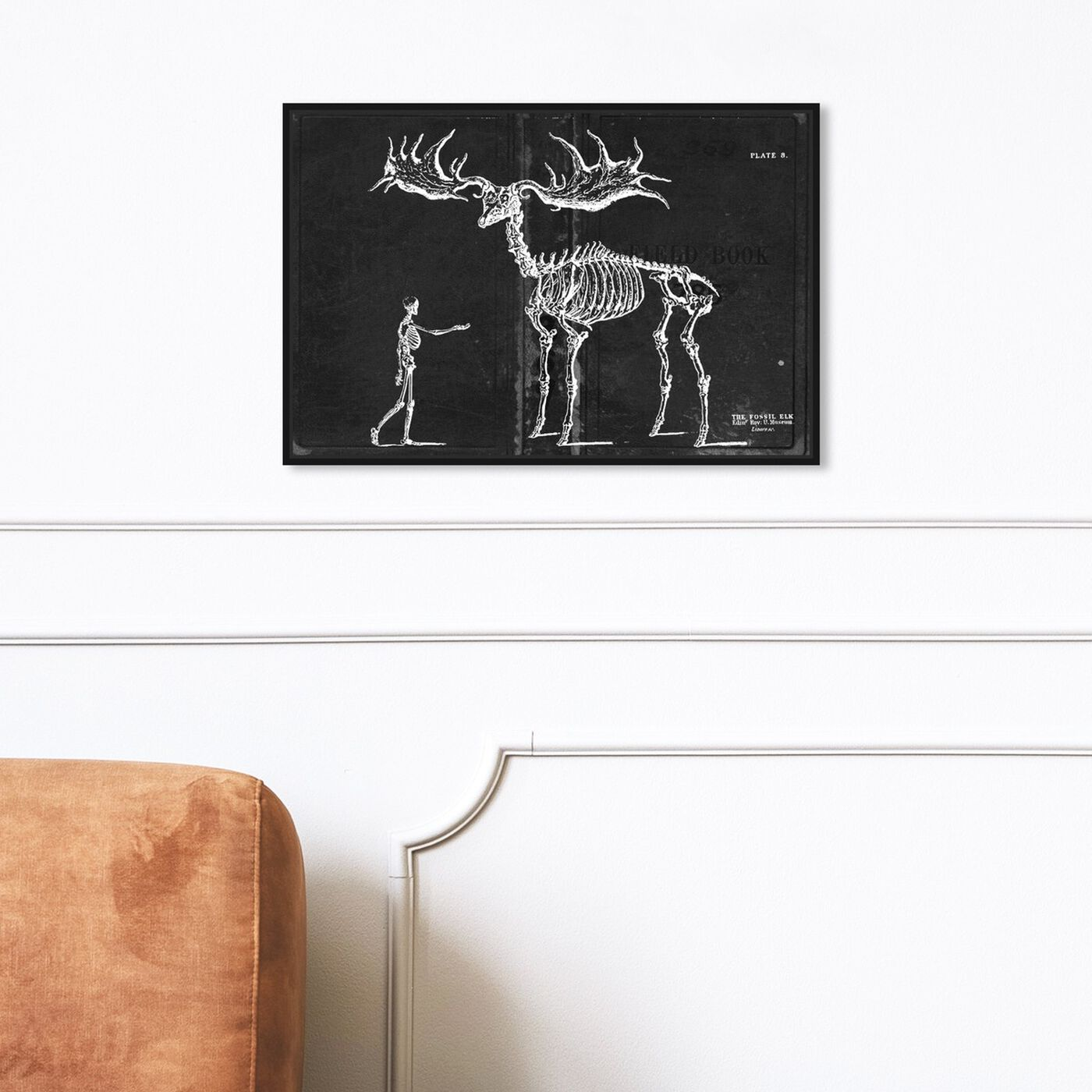Hanging view of Fossil Elk 1830 featuring animals and skeletons art.