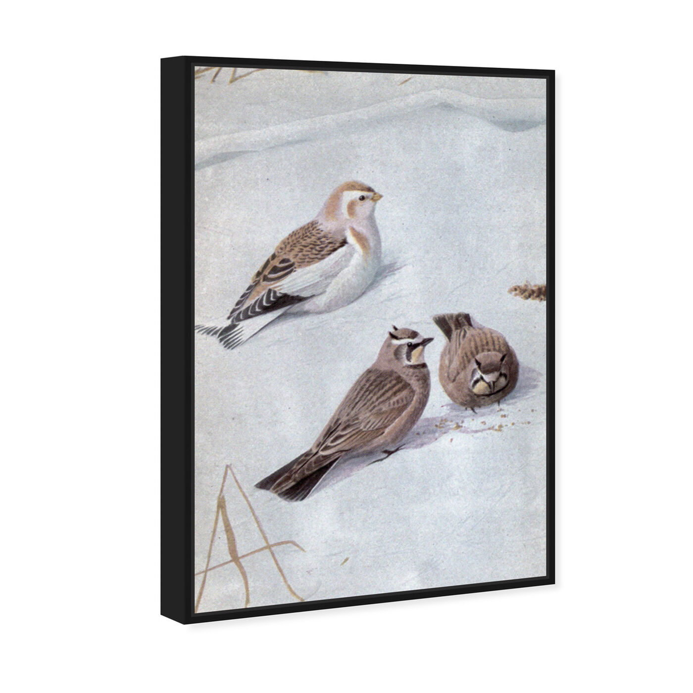 Angled view of Birds in the Snow featuring animals and birds art.