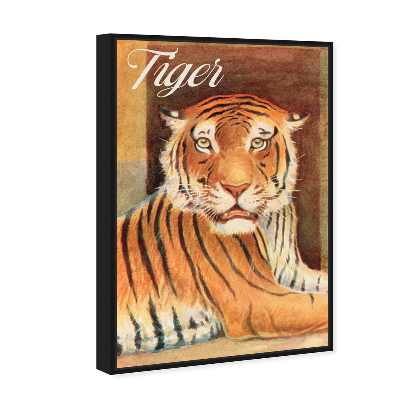 Angled view of Tiger featuring animals and felines art.